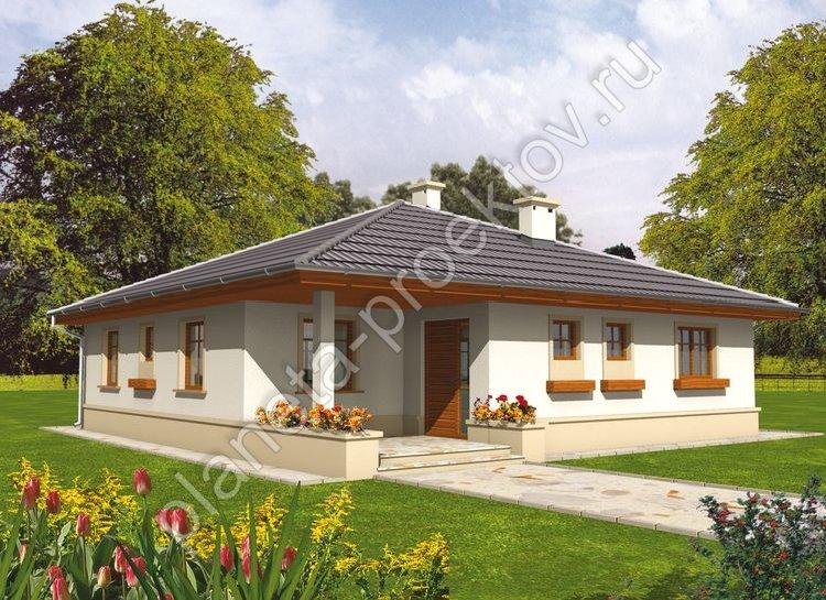 Крыши одноэтажных домов конструкция
